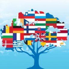 Ученые доказали, что все языки Земли имеют общие корни