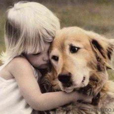 Собаки «заражаются» стрессом от хозяев
