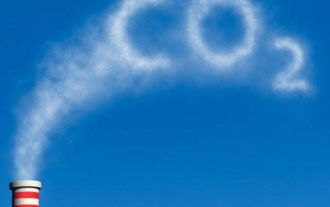 Взаимодействие между биосферой и климатом