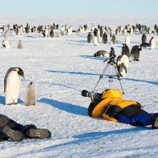 Кто скоро захватит Антарктиду