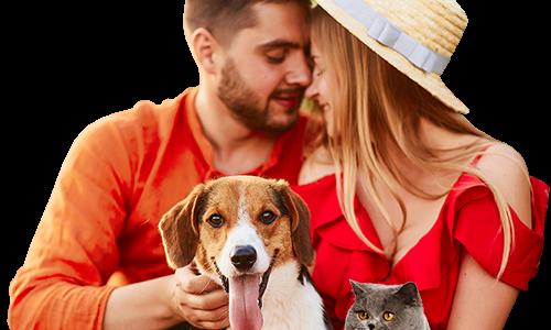 Что говорит наука опользе домашних животных илюбви кним