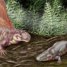 Еще одно массовое вымирание в истории Земли